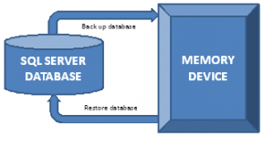 Back Up and Restore of SQL Server Databases